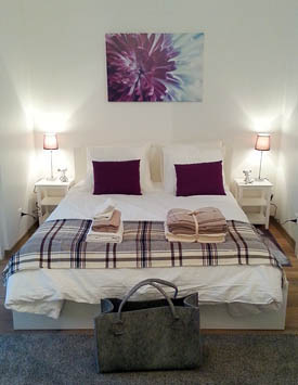 1 Room Furnished Flat in Nyon