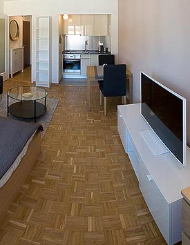 Furnished Studio in Geneva Pâquis