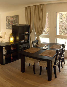 Furnished 1 BR Flat in Gland