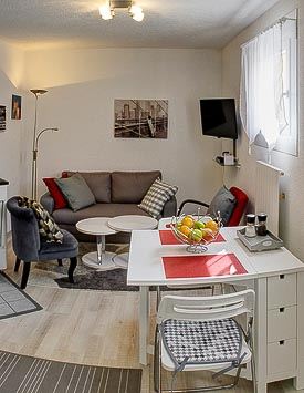 Furnished 1BR Flat in Commugny