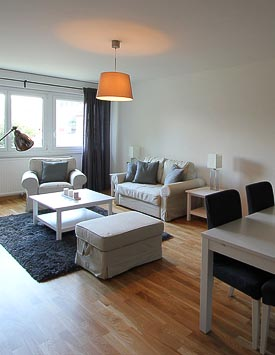 Furnished 1 BR Flat in Geneva