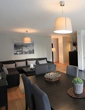 Furnished 2 BR Flat in Rue du Liotard