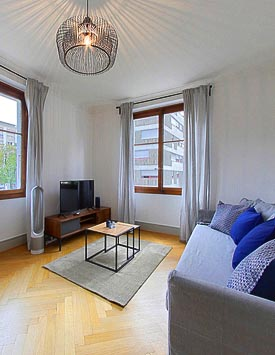 Furnished 2 BR Flat in Place D